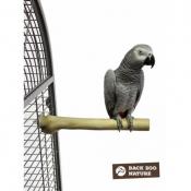 Back Zoo Nature Java Single Perch Medium