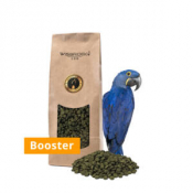 Wisbroek Parrot Nut Blend Booster 1 kg