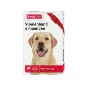 Beaphar Vlooienband 6 Maanden Hond Rood