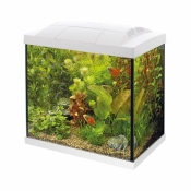 SuperFish Aquarium Start 30 Tropical Kit Wit